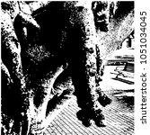 ficus banyan. silhouette. a... | Shutterstock .eps vector #1051034045
