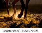 Detail Of A Horse Training...