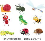 cute insect collection set   Shutterstock .eps vector #1051164749