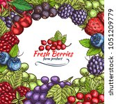 berries and berry fruits sketch ...   Shutterstock .eps vector #1051209779