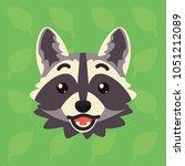 racoon emotional head. vector... | Shutterstock .eps vector #1051212089