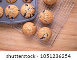 top down view on blueberry... | Shutterstock . vector #1051236254