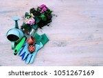 garden tools and flowers  the...   Shutterstock . vector #1051267169