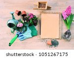 garden tools and flowers  the...   Shutterstock . vector #1051267175