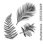 vector sketch illustration... | Shutterstock .eps vector #1051313669