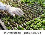 young woman biologist | Shutterstock . vector #1051435715