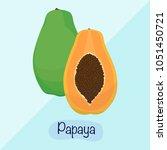 papaya vector illustration ...   Shutterstock .eps vector #1051450721