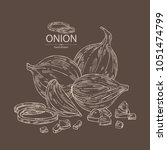 onion  rings  full onion and... | Shutterstock .eps vector #1051474799