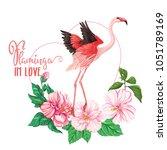 slogan flamingo in love on the... | Shutterstock .eps vector #1051789169