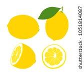 lemon. yellow juicy lemon with... | Shutterstock .eps vector #1051814087