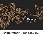 vector tropical template of... | Shutterstock .eps vector #1051887161