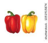 pepper on a white background.... | Shutterstock . vector #1051915874
