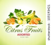 citrus fruits. assorted | Shutterstock .eps vector #105193421