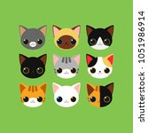 adorable kitten faces of... | Shutterstock .eps vector #1051986914