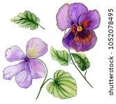 beautiful botanic set  vivid... | Shutterstock . vector #1052078495