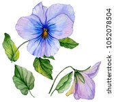 Beautiful Botanic Set  Blue And ...