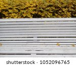 white bench of wood in the park.... | Shutterstock . vector #1052096765