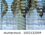 curtains in the home interior.... | Shutterstock . vector #1052132009
