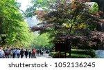 hundreds of travellers walking... | Shutterstock . vector #1052136245
