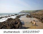 uk  wales  pembrokeshire ... | Shutterstock . vector #1052155547