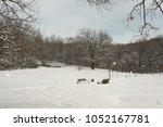 winter park trees in the snow | Shutterstock . vector #1052167781