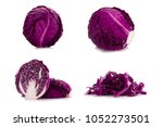 purple cabbage set collection... | Shutterstock . vector #1052273501