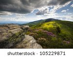Roan Mountain Highlands landscape with rhododendron flowers during NC Spring Blooms at Jane Bald along the Appalachian Trail - stock photo