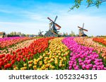 landscape with tulips ... | Shutterstock . vector #1052324315