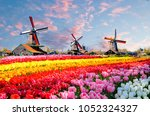 landscape with tulips ... | Shutterstock . vector #1052324327