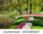 keukenhof park in amsterdam... | Shutterstock . vector #1052485337