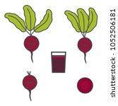 beet icon. slice of beet. beet... | Shutterstock .eps vector #1052506181