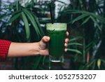 green healthy juice | Shutterstock . vector #1052753207