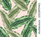 green banana palm leaves on the ... | Shutterstock .eps vector #1052895461