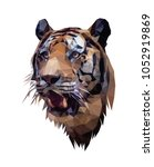 low poly portrait of tiger.... | Shutterstock .eps vector #1052919869