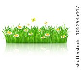 summer background with green... | Shutterstock .eps vector #1052945447