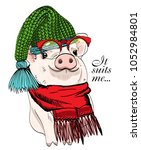 vector pig with red glasses ... | Shutterstock .eps vector #1052984801