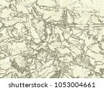 dried flowers background... | Shutterstock . vector #1053004661