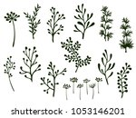 willow and palm tree branches ... | Shutterstock .eps vector #1053146201