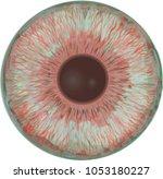 Zombie Eye Iris   Pale Blue Eye ...