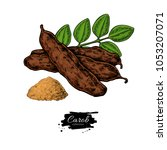 carob vector superfood drawing. ... | Shutterstock .eps vector #1053207071