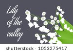 may lily. vector illustration... | Shutterstock .eps vector #1053275417