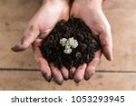 top view of a man holding a... | Shutterstock . vector #1053293945