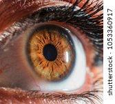 hazel eye macro | Shutterstock . vector #1053360917