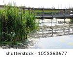 a public path built over a marsh | Shutterstock . vector #1053363677