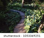 winding path in a peaceful... | Shutterstock . vector #1053369251