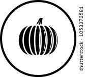 pumpkin fruit symbol   Shutterstock .eps vector #1053372581