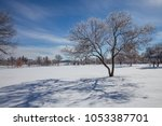 snow covered tree and long... | Shutterstock . vector #1053387701