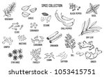 hand drawn spice and vegetable... | Shutterstock .eps vector #1053415751