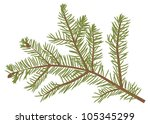 Illustration With Fir Branch...