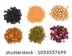 collection set of various dried ... | Shutterstock . vector #1053557699